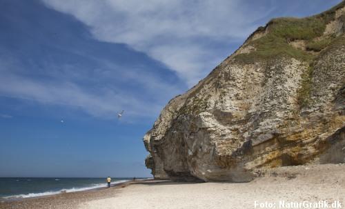 Underligt at forestille sig at denne kalksten-mastodont var en ø i stenalderhavet.
