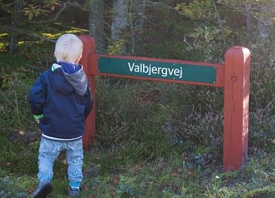 valbjergvej